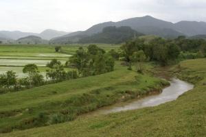 Mata ciliar degradada e plantações às margens do rio