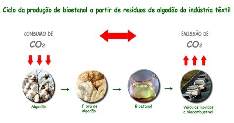 Infográfico - Ciclo Bioetanol